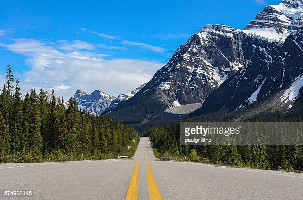 Empty road, Jasper National Park, Alberta, Canada