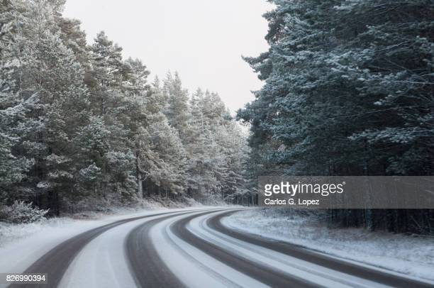 empty road partially covered in snow among trees - driving in snow stock photos and pictures