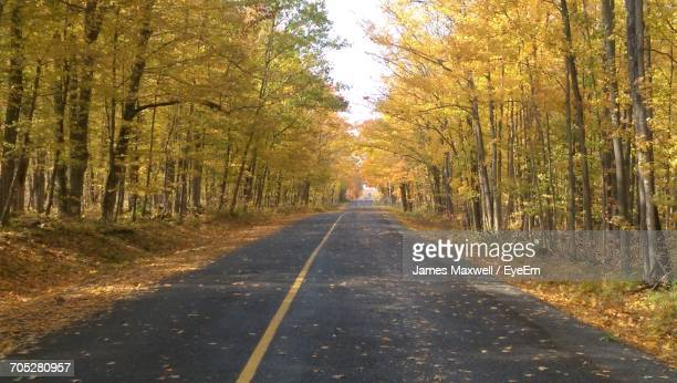 empty road passing through forest - peterborough ontario stock photos and pictures