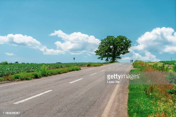 empty road - liyao xie stock pictures, royalty-free photos & images