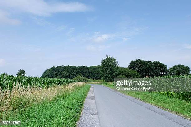 empty road with trees in background - ミュンスター市 ストックフォトと画像