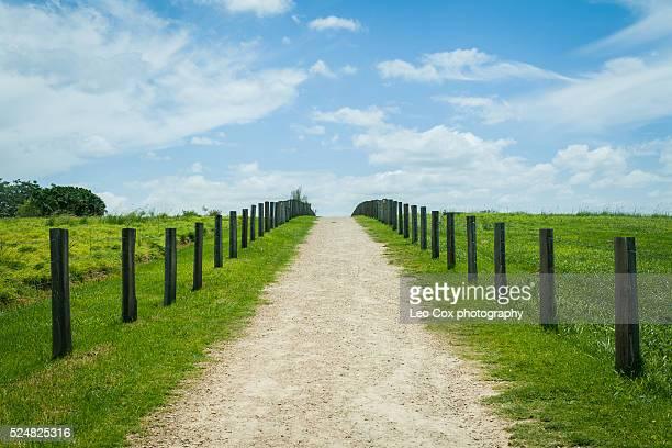 Empty rural path scene