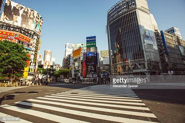 Empty Shibuya crossing in the morning, Tokyo, Japan