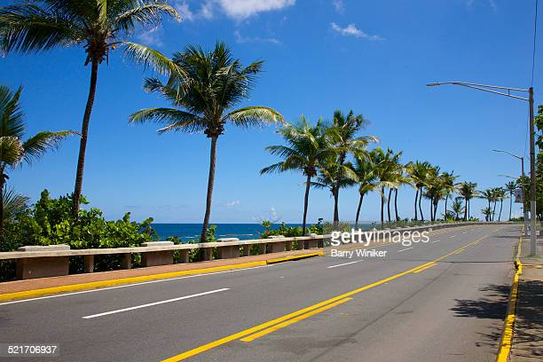Empty shoreside road near palms, San Juan