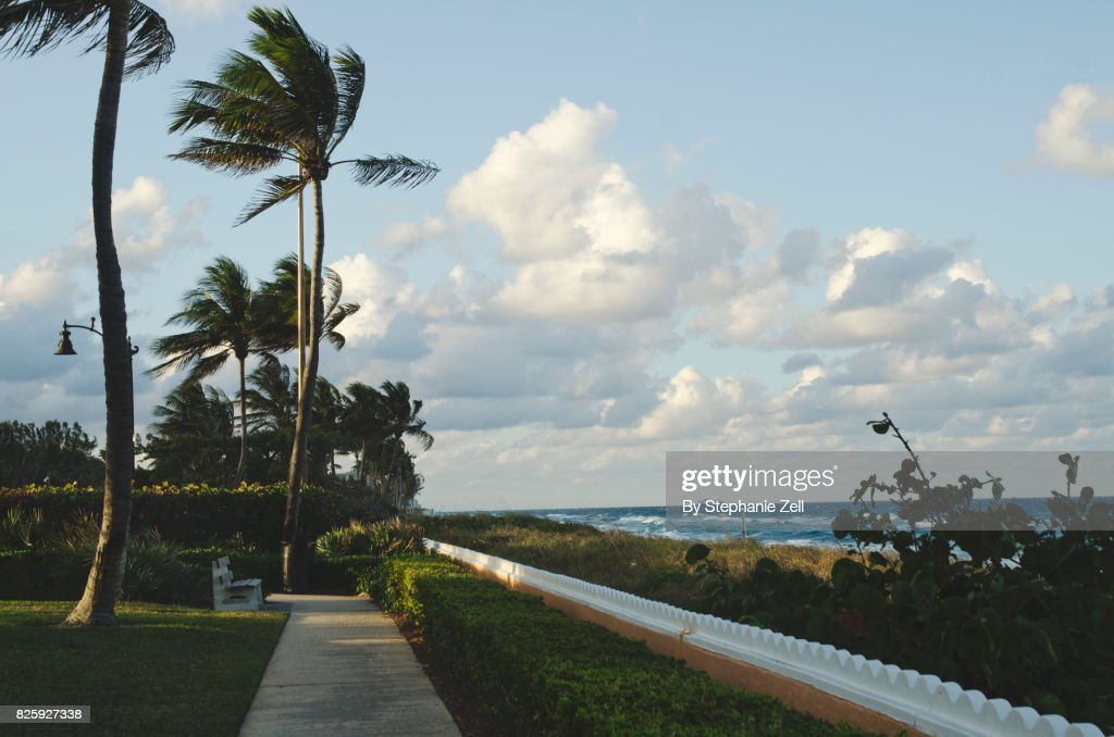 Empty sidewalk and bench looking down coast of Palm Beach : Stock Photo