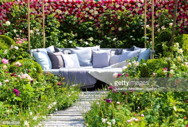 empty sofa amidst plants in garden - cushion stock photos and pictures