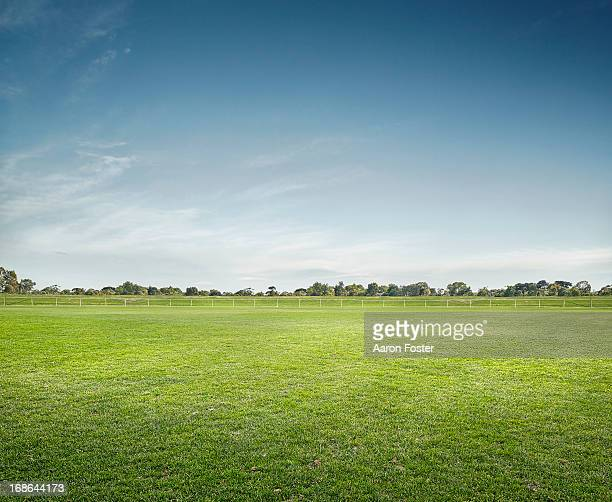 empty sports ground - grass stock pictures, royalty-free photos & images