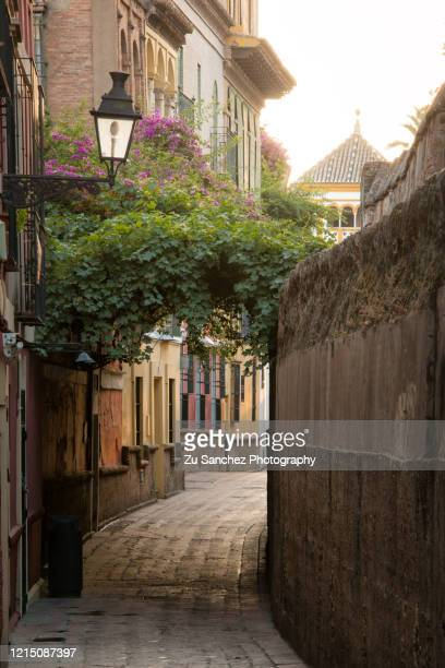 empty street - seville stock pictures, royalty-free photos & images