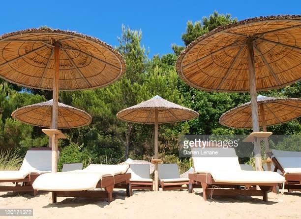 Empty Sun Loungers and beach palapa