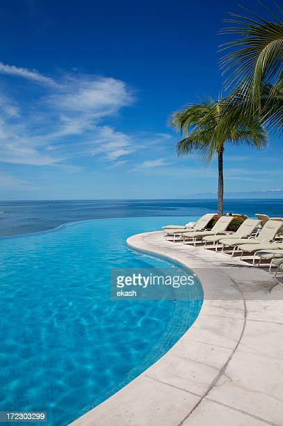 Empty swimming pool next to white sun loungers and palm tree