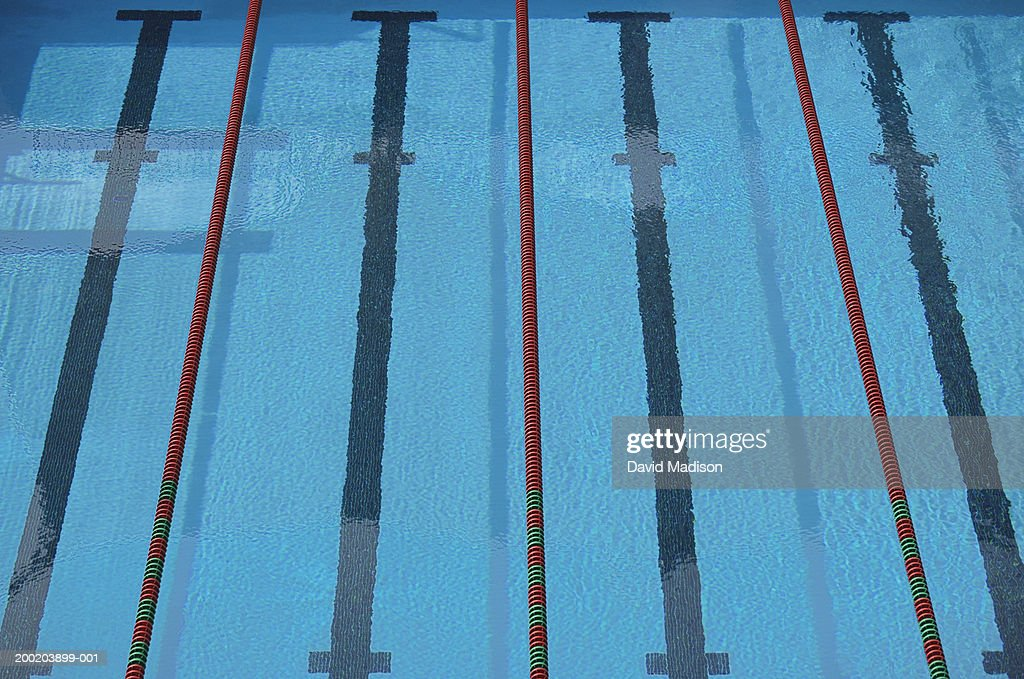 Empty Swimming Pool With Lane Lines And Lane Markers ...