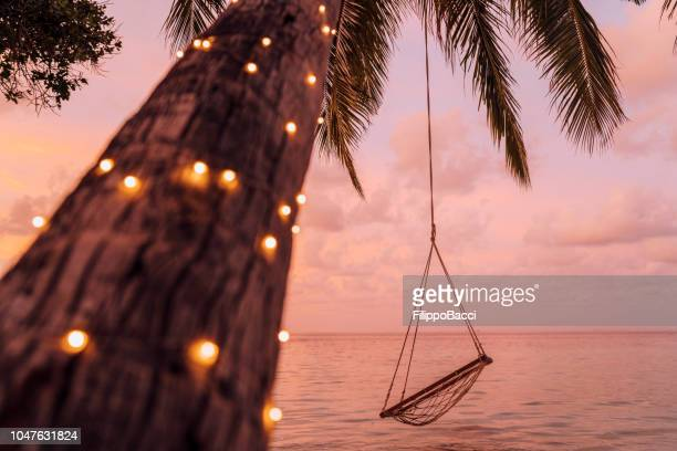 empty swing in a tropical paradise - escapism stock pictures, royalty-free photos & images