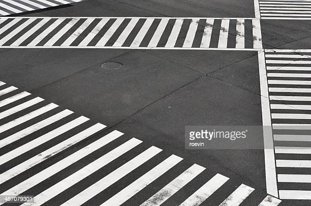 Empty Tokyo Pedestrian Crossing