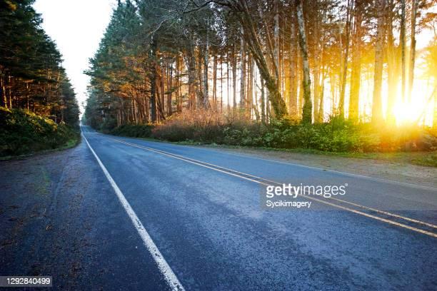 empty two lane highway, sun setting through trees - straßenrand stock-fotos und bilder