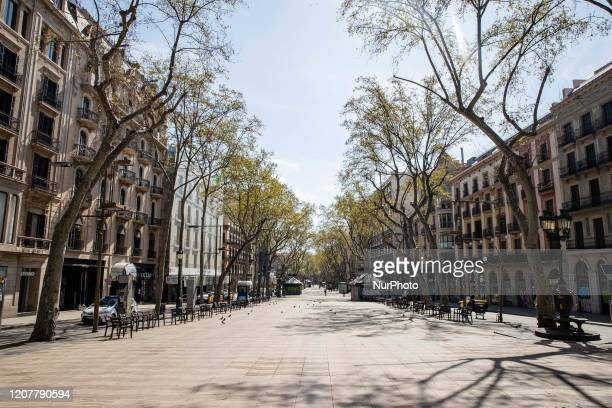 Empty view of La Rambla de Barcelona after the state of alarm imposed by the spanish government and measure of lockdown the population of Catalonia...