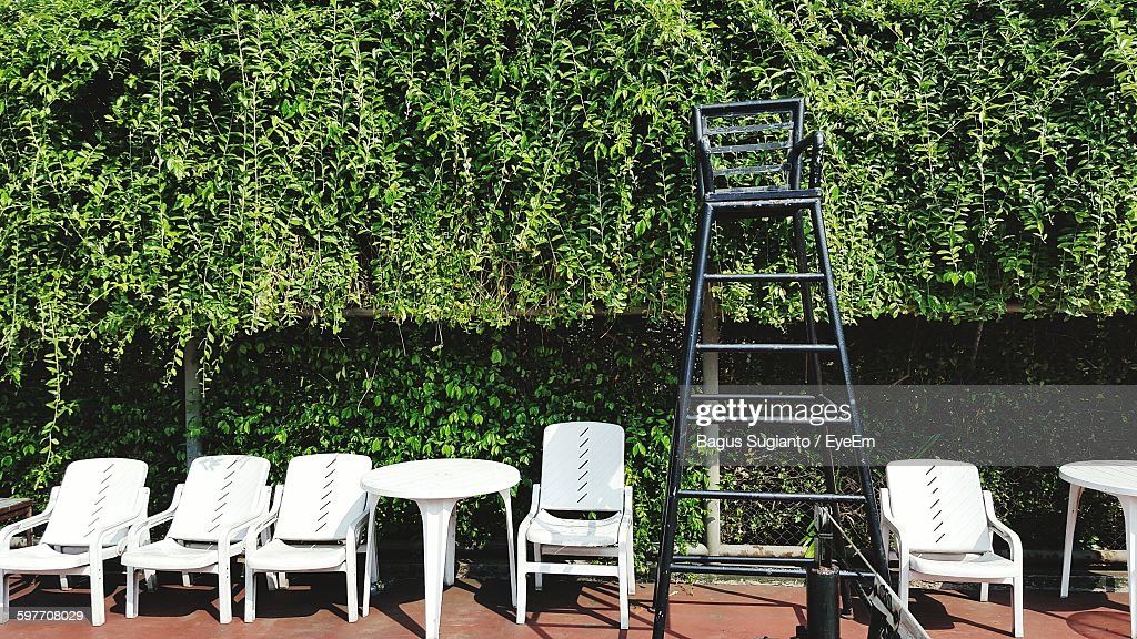 Empty White Chairs Against Plants At Tennis Court : Stock Photo