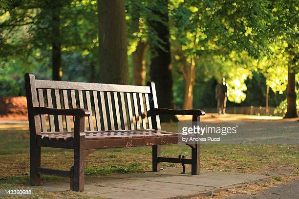 empty wooden bench in holland park - holland park stock pictures, royalty-free photos & images