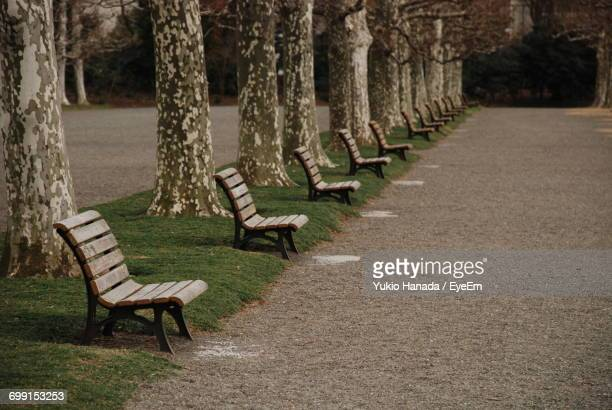 Empty Wooden Benches Against Treelined By Pathway At Park