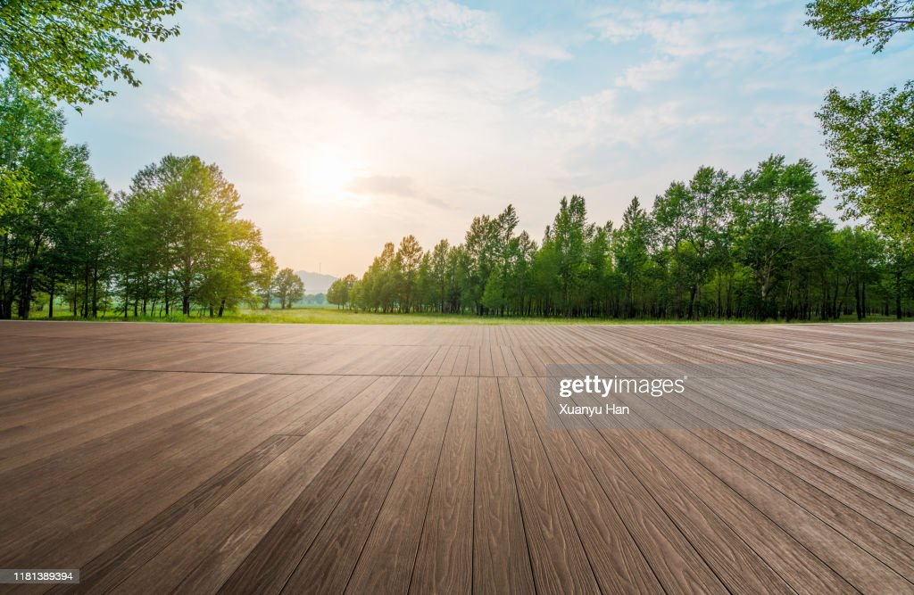 Empty wooden floor in the forest : Stock Photo