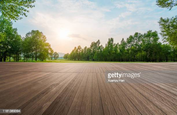 empty wooden floor in the forest - wooden floor stock pictures, royalty-free photos & images