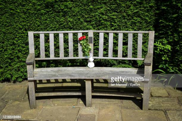 empty wooden memorial bench with vase of flowers - memorial stock pictures, royalty-free photos & images