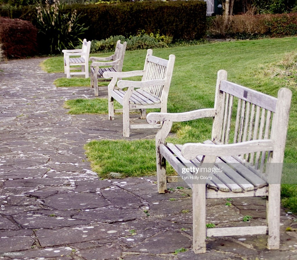 Empty wooden park benches : Stock Photo
