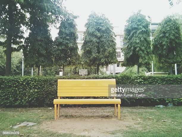 empty yellow bench by plants in park - bench stock pictures, royalty-free photos & images