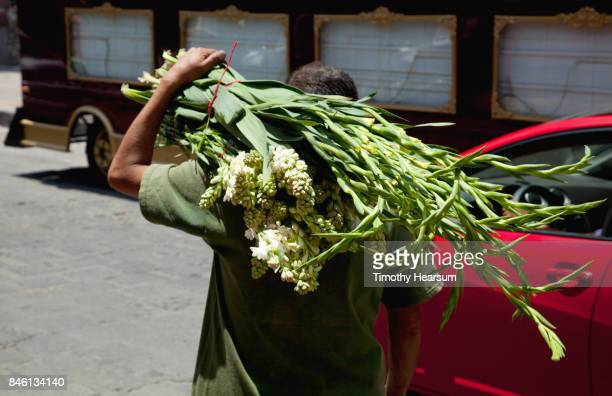 en route to market, a man carries bunches of cut gladiola and stock - timothy hearsum stockfoto's en -beelden
