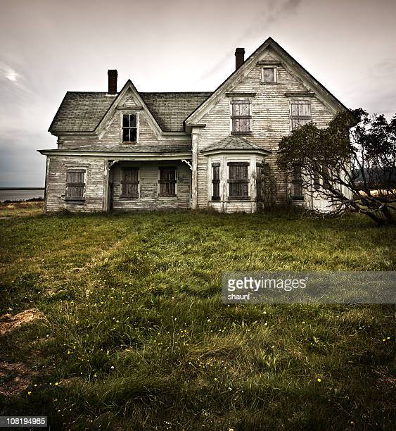 encased within - abandoned stock pictures, royalty-free photos & images