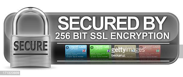Encrypted 256 Bit SSL Encryption Logo with Clipping Path