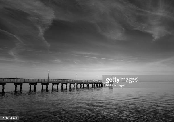 End of the Pier: Black and White View of a Beach Scene