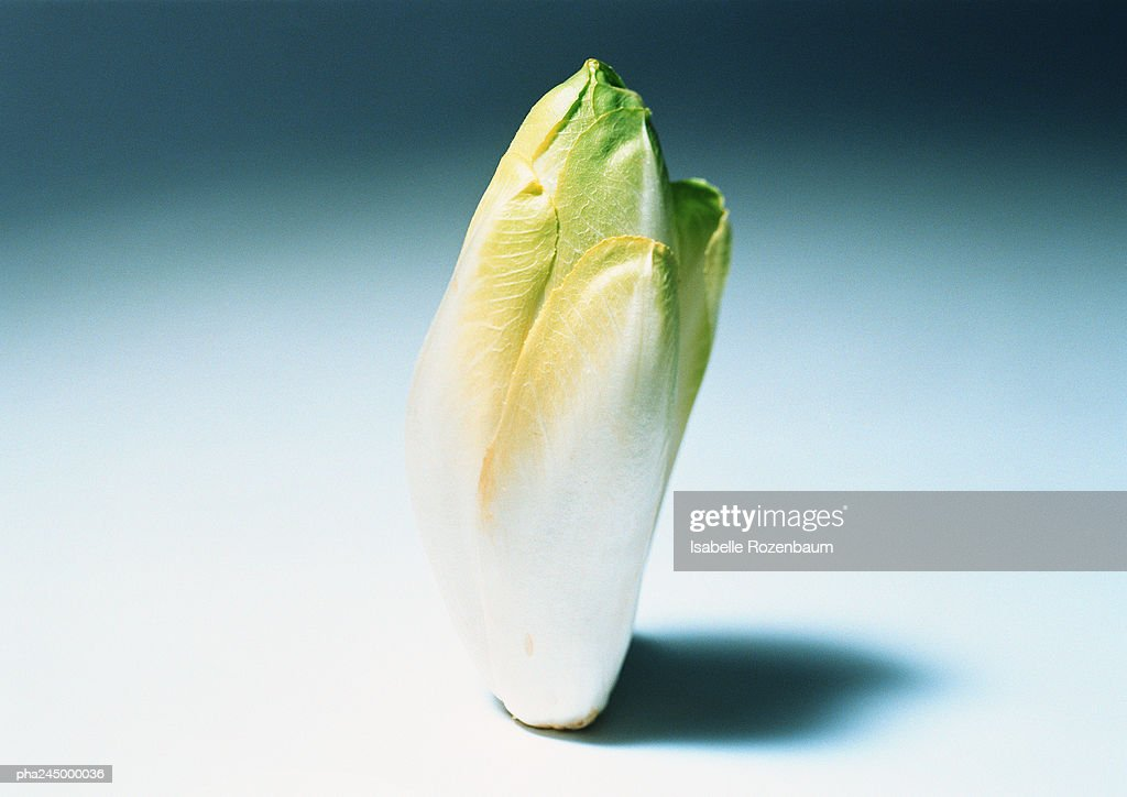 Endive, close-up : Stockfoto