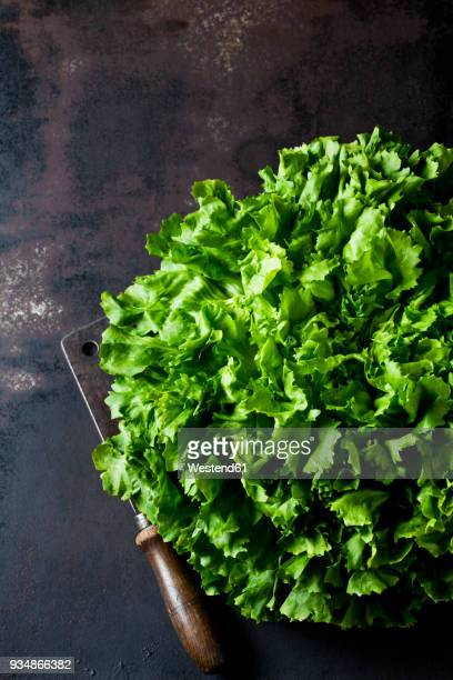 endive salad and old cleaver on rusty ground - lettuce stock pictures, royalty-free photos & images
