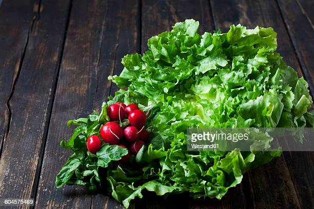 Endive salad and red radishes on dark wood