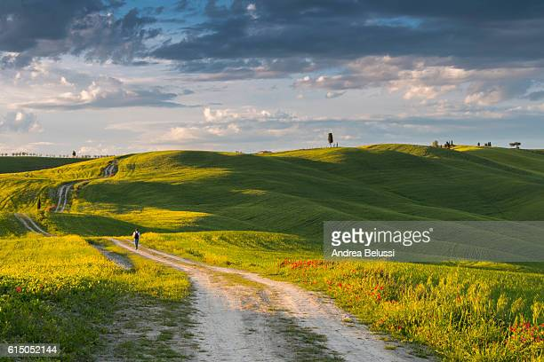 endless road in tuscan hill with a people waking away - crete senesi, tuscany, italy, europe - val d'orcia foto e immagini stock