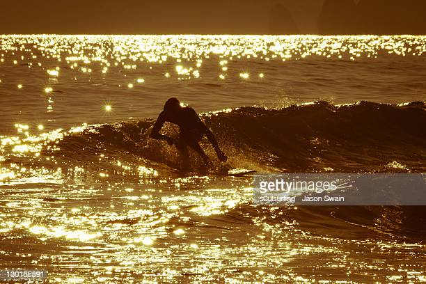 endless summer - s0ulsurfing stock pictures, royalty-free photos & images
