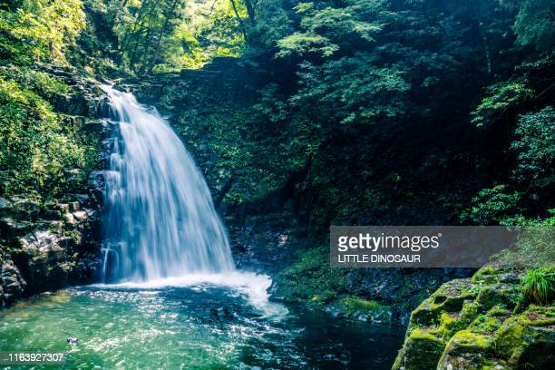 endless water in the forest. at akame 48waterfalls - 水流 ストックフォトと画像