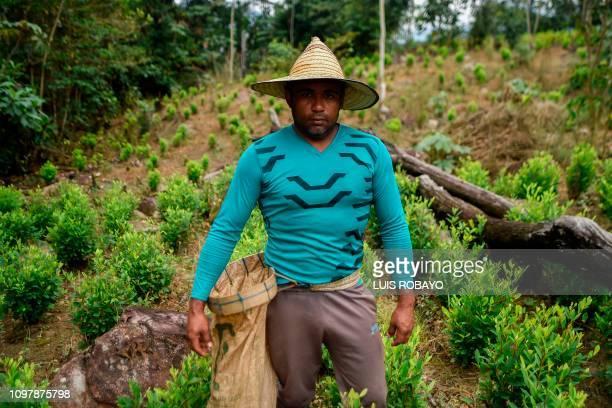 Endy Fernandez a Venezuelan migrant working as a 'Raspachin' poses for a picture at a coca plantation in the Catatumbo region Norte de Santander...