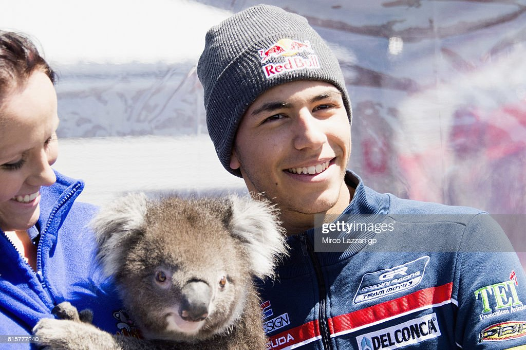Enea Bastianini of Italy and Gresini Racing Moto3 smiles with koala in paddock during previews ahead of the 2016 MotoGP of Australia at Phillip Island Grand Prix Circuit on October 20, 2016 in Phillip Island, Australia.