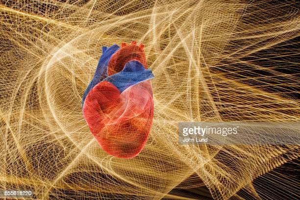 Energetic Human Heart