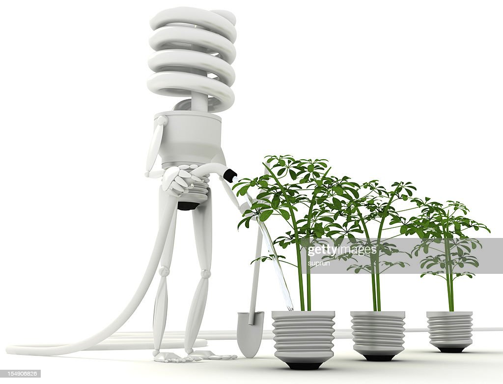 Energy Efficient Bulb going green : Stock Photo