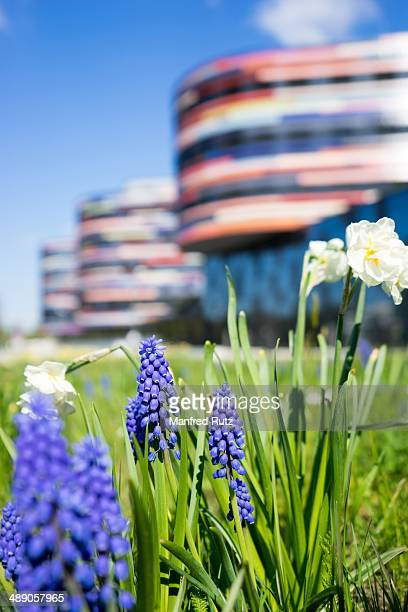 Energy efficient office building with geothermal energy authorigy of urban development and environment flowers in the foreground