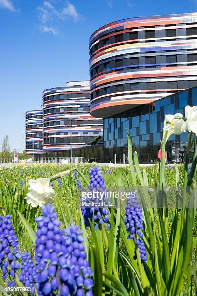 Energy efficient office building with geothermal energy authority of urban development and environment flowers in the foreground