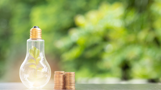 Energy saving. tree in light bulb and stacks of coins on nature background. Saving, Natural energy and financial concept. 1053476316