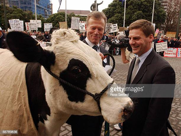 Energy the cow with National MP's Lockwood Smith left and Bill English at Parliament Thursday during a protest by farmers against the so called fart...