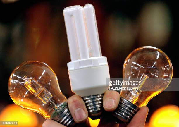 Energysaving light bulbs and an incandescent one are seen on December 17 2008 in Molsheim eastern France at French light bulbs firm Osram factory The...