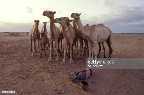 Enfant morte de faim lors d'une famine en juillet 1992 en Somalie