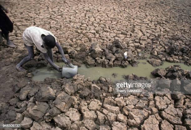 Enfant prenant de l'eau dans le lit asséché du lac Tchad pendant une sécheresse au Niger en novembre 1984