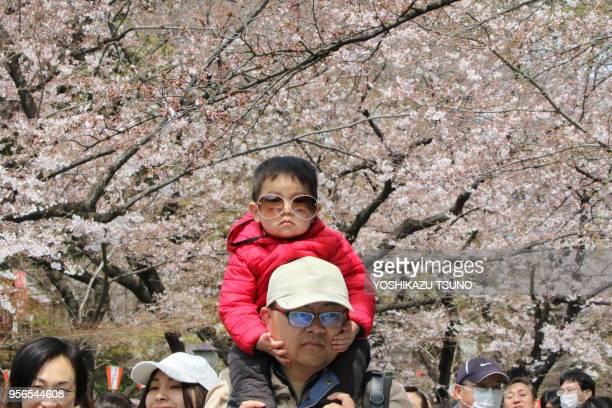 Enfant sur les épaules de son père et promeneurs dans le parc de Chidorigafuchi le week end du printemps sous des cerisiers en fleurs le 2 avril 2017...