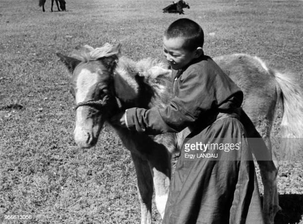 Enfant tenant la bride d'un poulain en Mongolie
